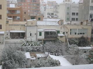 Nieve en Palma